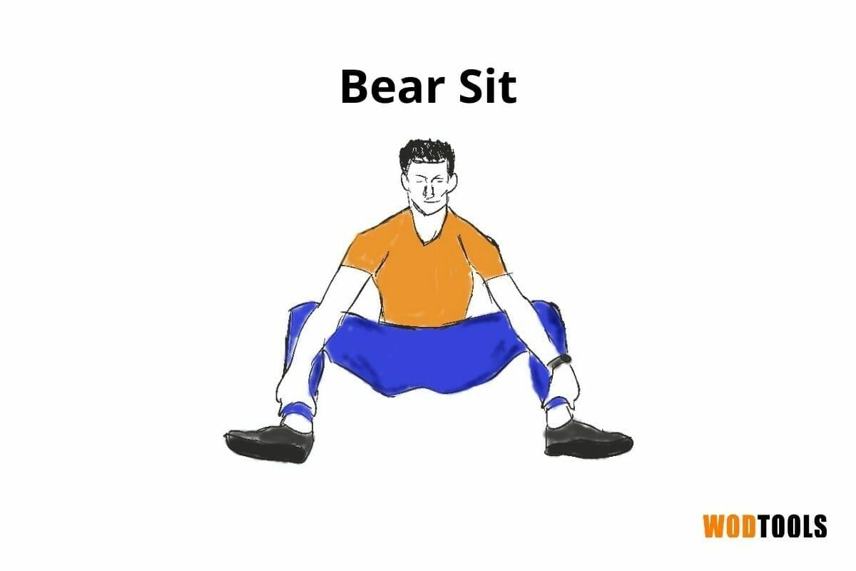 bear sit pose
